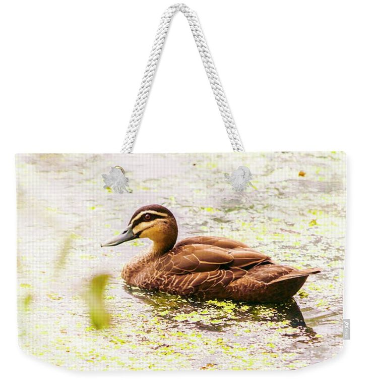 Duck Weekender Tote Bag featuring the photograph Brown Pond Duck by Jorgo Photography - Wall Art Gallery