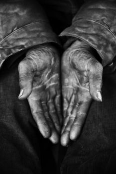 Single Shots - Portfolio - Stephan Vanfleteren