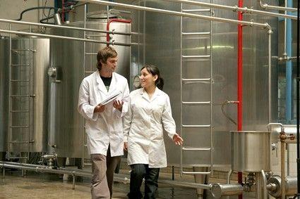 crear una industria de alimentos inovadores