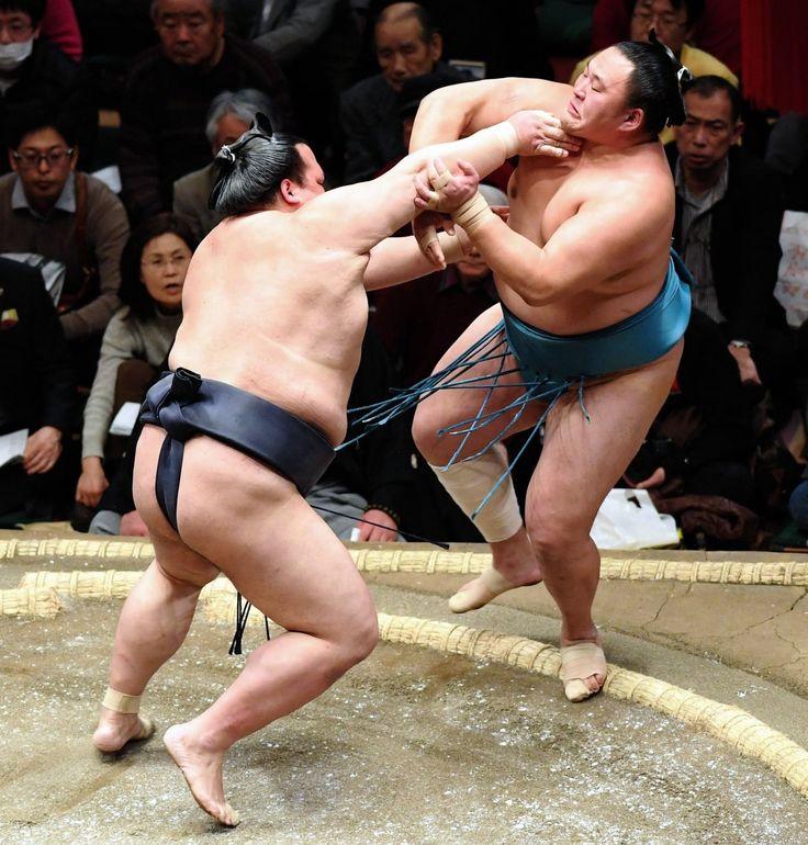 大関稀勢の里が新関脇玉鷲を力勝負でねじ伏せ連勝 デイリースポーツ #相撲