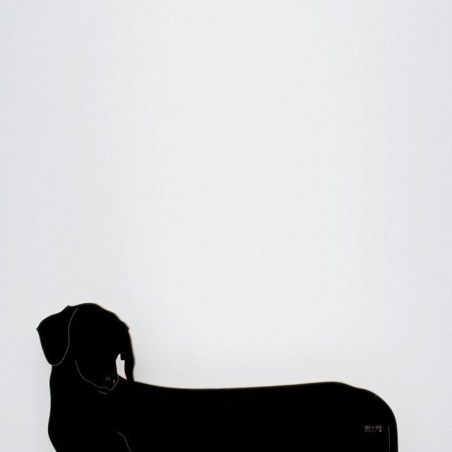 Dog Door Stop by 157+173 Designers/ ucecurated x Qrator