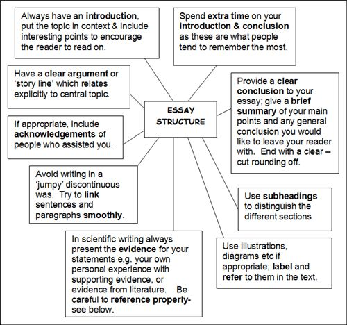 english opinion essay structure What is an argumentative essay the argumentative essay is a genre of writing that requires the student to investigate a topic collect, generate, and evaluate.