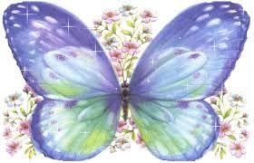 mariposas bellas - Buscar con Google