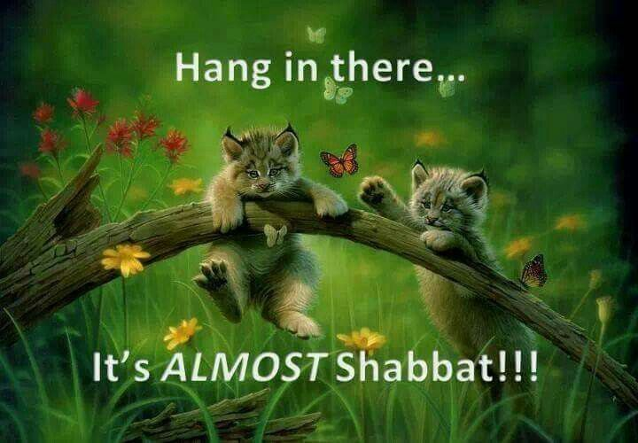 Hang in there... it's ALMOST Shabbat!!! | Sabbath Rest ...