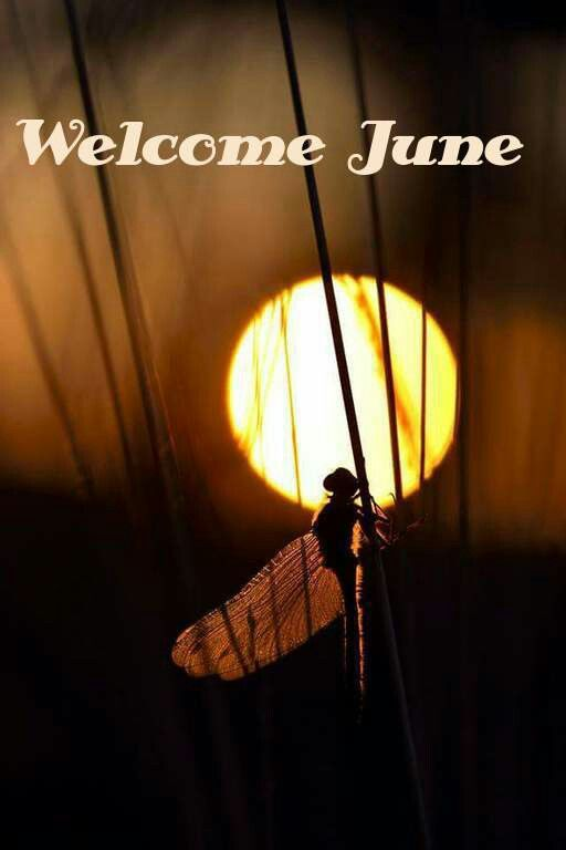 Welcome June. Just_Mel. Month quotes
