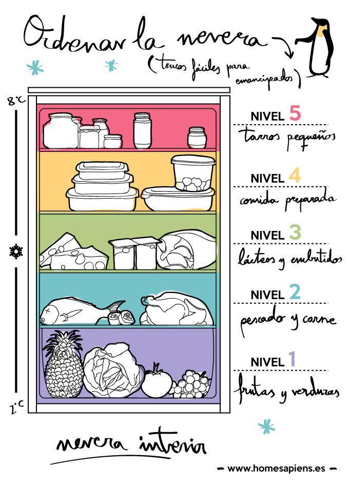 Mucha gente piensa que el frigorífico es como un armario donde ir acumulando la comida a lo loco, en el primer hueco libre que encuentra. Sin embargo, mantener un orden lógico puede resultar clave para la correcta conservación de los productos y para evitar tener que tirar comida. Aquí tenéis unos cuantos trucos muy sencillos,