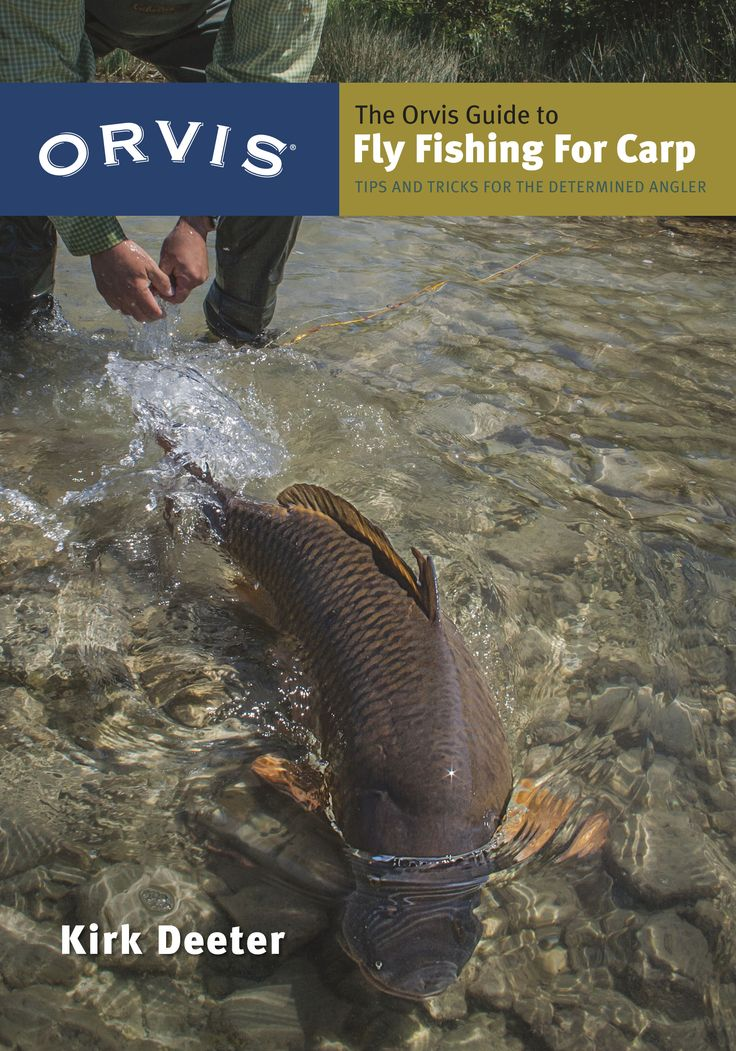 35 Best Fly Fishing For Carp Images On Pinterest Fishing