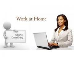 Students required for online Data Entry Jobs
