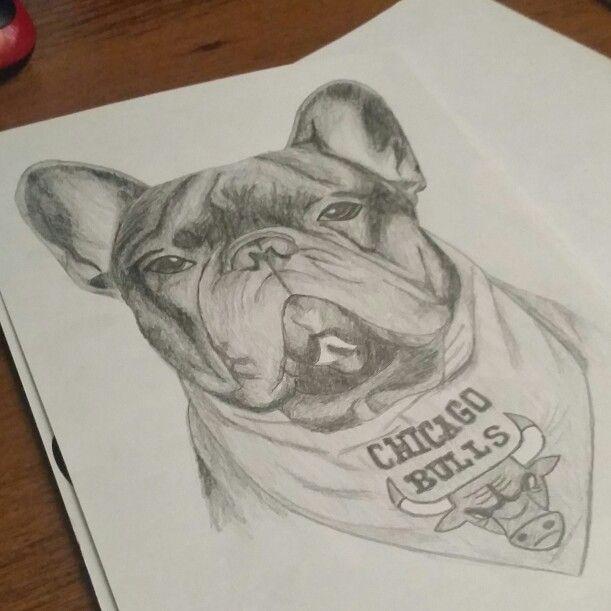 Moris. Bulldog art