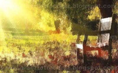 CON ESTE SOL DE OTOÑO…// Con este sol de otoño acariciándome sobre la piel que acoge agradecida el haz de rayos regalo de los dioses en temporada de las postrimerías … se ve la vida cual soplo fugitivo que junta por el suelo la hojarasca de los tiempos pasados que no fueran mejores que este instante bendecido. Con este sol de Otoño viene impulso de escribir un poema en el que quede plasmado con palabras el momento…—> http://albertotroconiz.blogspot.com.es/2017/10/con-este-sol-de-otono.html