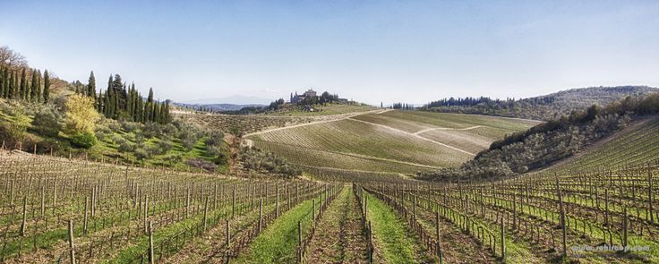 Tuscany, Italy in the heat of the Tuscan hills. #Tuscany #italy #fields #nature #Toscana #WallArt #Hills #Nature #Bliss #Abstract #painting #sky #skies #landscape #Panoramic #panorama #Florence