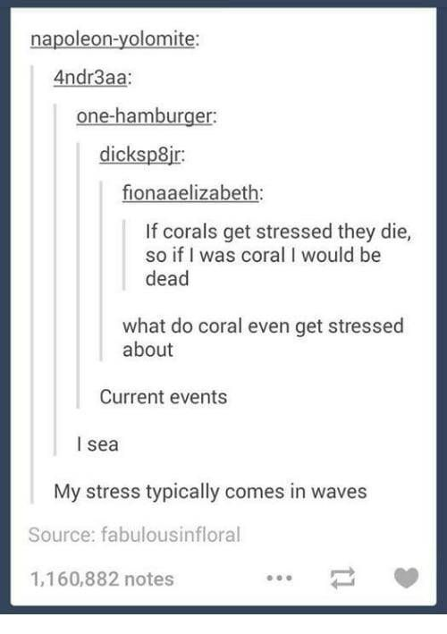 23 Puns From Tumblr That Are Bound To Make You Laugh - Funny Gallery