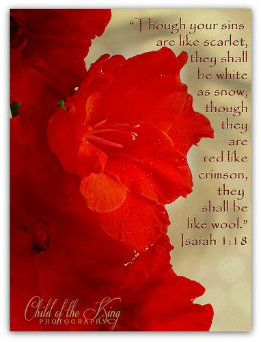 """""""Though your sins are like scarlet, they shall be as white as snow; though they are red like crimson, they shall become like wool."""" ~Jesus"""