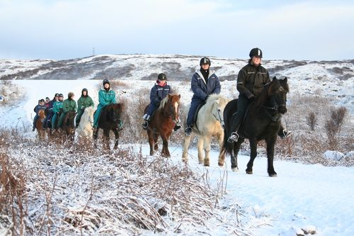 Riding in the lava fields of the wilderness in Iceland. It's such a thrill and it really doesn't matter how the weather is.... Snowy, sunny, rainy - It's always a blast!