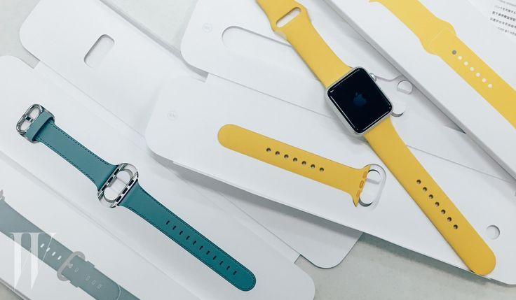 다채로워진 애플 워치 밴드 컬러..