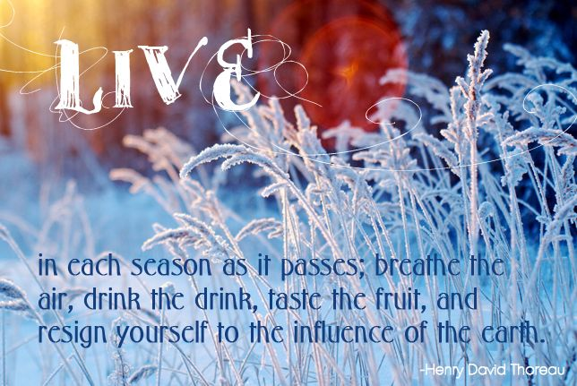 Live in each season as it passes; breathe the air, drink the drink, taste the fruit, and resign yourself to the influence of the earth. Henry David Thoreau