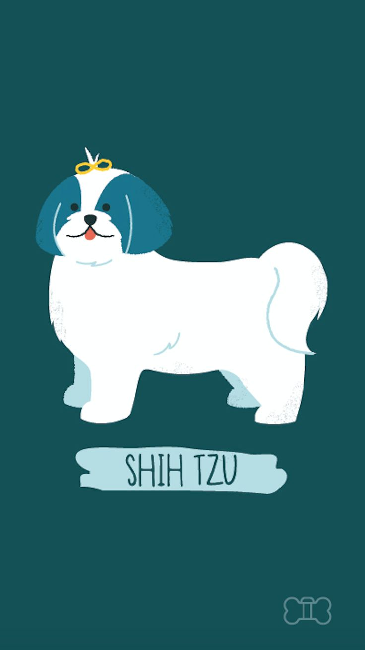 best rambo images on pinterest pets shih tzus and backgrounds