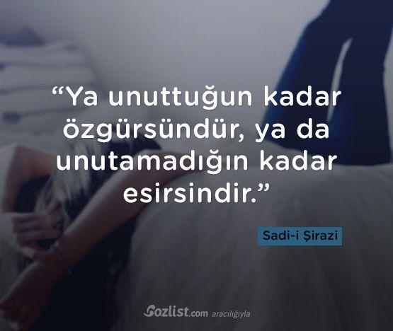 """""""Ya unuttuğun kadar özgürsündür, ya da unutamadığın kadar esirsindir."""" #sadi #şirazi #sadi-i #sözleri #yazar #şair #kitap #şiir #özlü #anlamlı #sözler"""