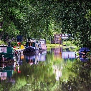 """Channel your inner-Bridget Jones, take a bottle of wine and your Hugh Grant equivalent and rent a rowing boat from the Boat House across from Harrison Park."""