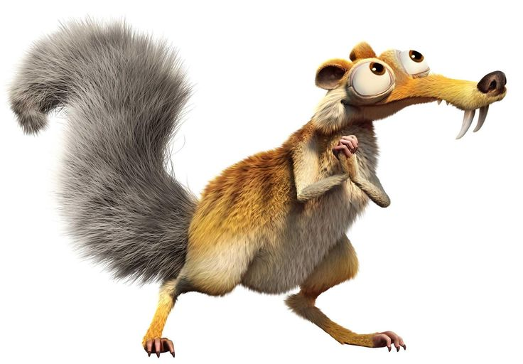 Ordinary Squirrel From Ice Age #2 - Squirrel From Ice Age Scrat
