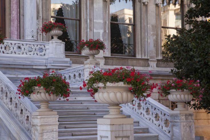 Vibrant flowers decorating the Palace stairs.