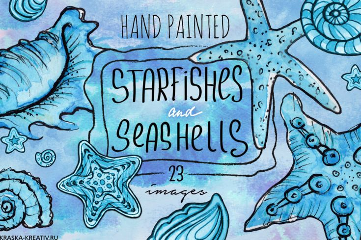FREE! starfishes and seashells   by Krasnih Katerina