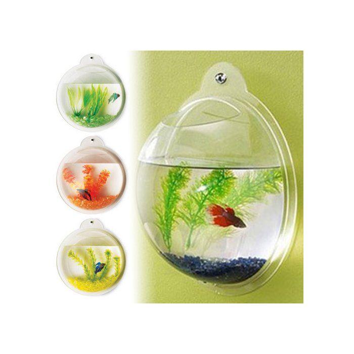 "Introducing fish bubbles! These hip and trendy fish tanks can be hung virtually anywhere! They require no pump or filtration! You can decorate your fish bubble with any aquarium accessories and keep goldfish, bettas, African dwarf frogs or any other ""easy-to-maintain"" freshwater fish in a cool happy home on a wall! Buy 3 or 4 tanks and you can create wall patterns and amazing conversation pieces in your home or office. Fish bubbles include a pre-drilled aquarium ready to han..."