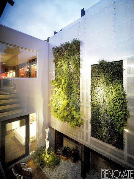 One of the coolest trends for inner city living - Vertical Gardens