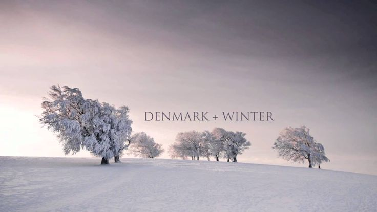 "Denmark + Winter - Every Breath You Take (The Police - Re:Imagined) (thanks, ""Stalker"" s1e4)"