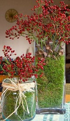 A simple red & green centerpiece made from berry branches & acorn caps in a bed of moss.