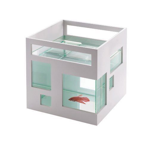 Small Aquarium For Fish Goldfish Bettas Home Modern Futuristic Decor 2 Gallon #UmBrand