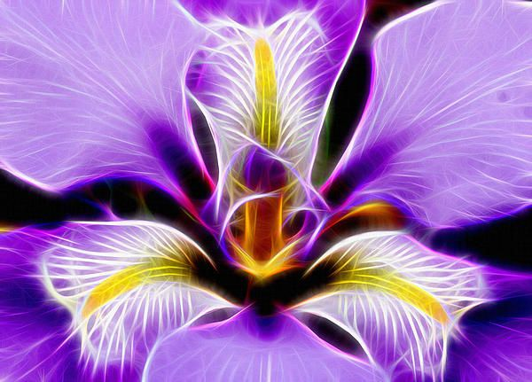Pictures Digital Arts Of Flowers by Michael Vicin #flowers #art
