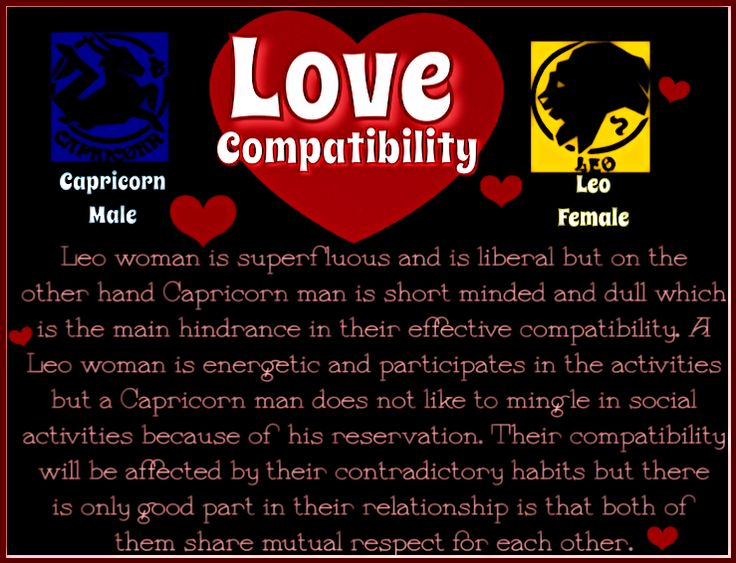 love match for leo and capricorn relationship