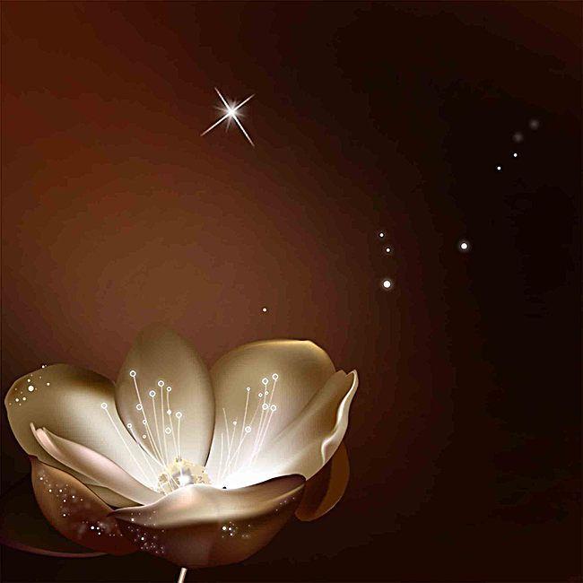 أسود غامض خلفيات زهور جميلة Light Bulb Chandelier Lights Background Lamp Light