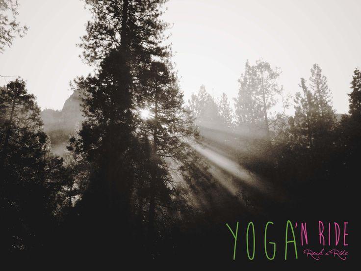 Good morning @ Yosemite National Park - California www.rocknride.eu