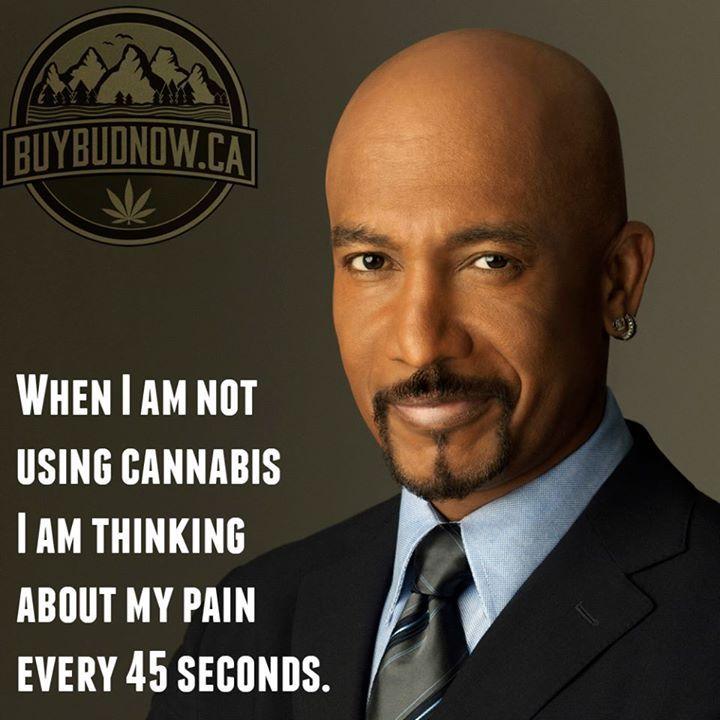 Montel Williams on Cannabis.  Order Bud Online Today--> http://crwd.fr/2qPUaCL  #Cannabis #Marijuana #Canada
