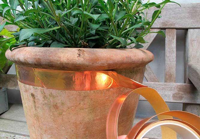 10 smarte livstriks til hagen