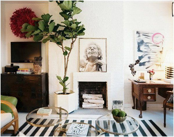 If You Like Plants And You Love To Have Almost Everything In The Interior  Of Your