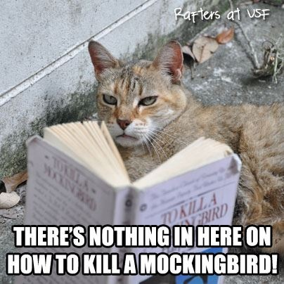 antithesis to kill a mockingbird What are some examples of literary devices in the book to kill a mockingbird update cancel ad by quora for business  the title to kill a mockingbird and atticus' story about why it is a sin to kill one, are implied metaphors for tom robinson, boo radley, dill harris, scout and jem- who are all in their own way, mockingbirds lastly.