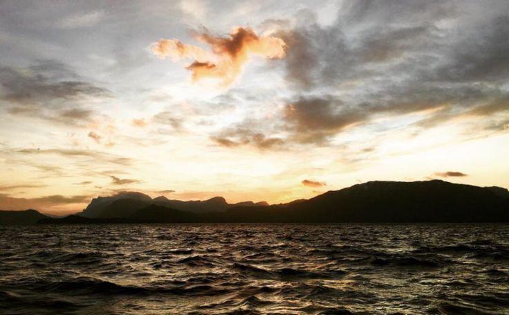 Jakten på solen | Tess Wiberg | Bloglovin'