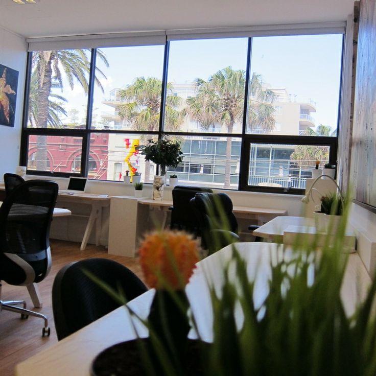 The Manly Hub - Jobs & Portfolio - The Loop