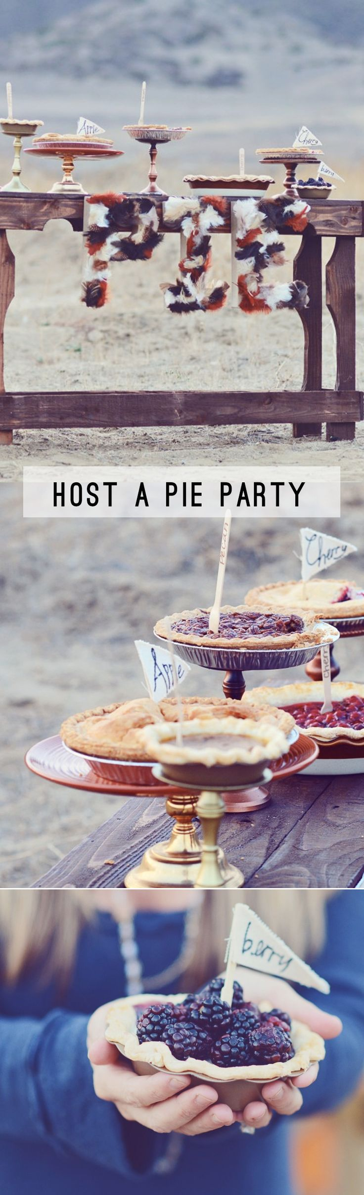 Host a Pie Party