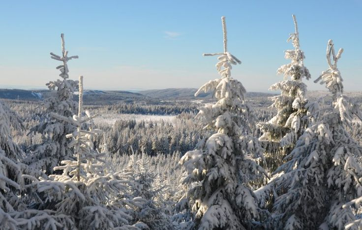 Winterwunderland Harz – Im Winter auf den Brocken