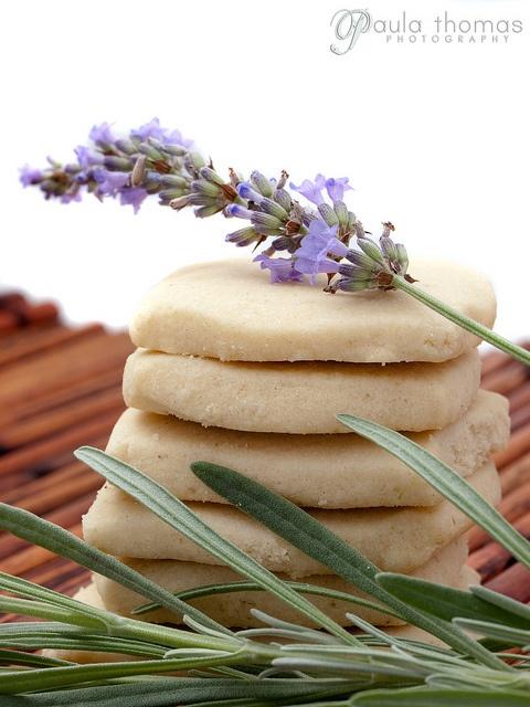 **Lavender - Lavendel