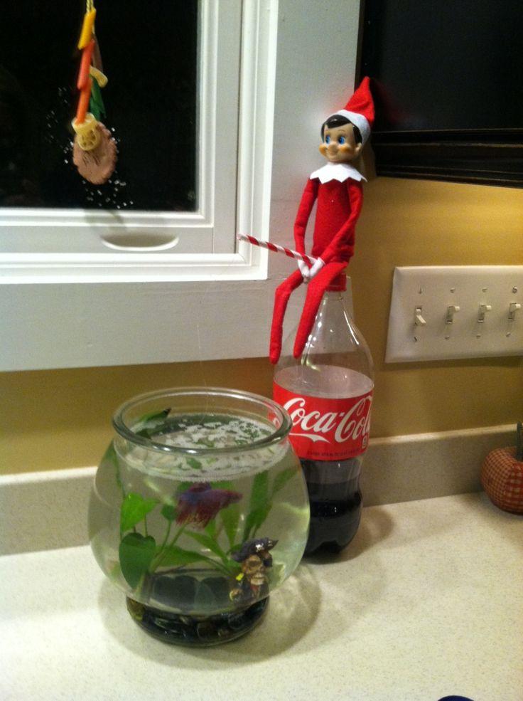 Elf On The Shelf Idea Fishing My Pins Pinterest