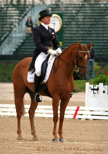 Karen and Teddy, Rolex Kentucky 2007... I wish I could have seen the 'super pony' he's the same size as my mare.