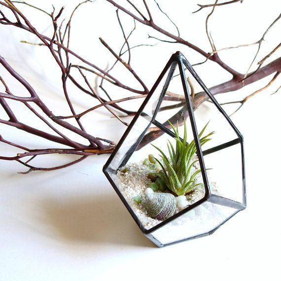 Hey, I found this really awesome Etsy listing at http://www.etsy.com/listing/109154976/geometric-terrarium-pod-air-plant-glass