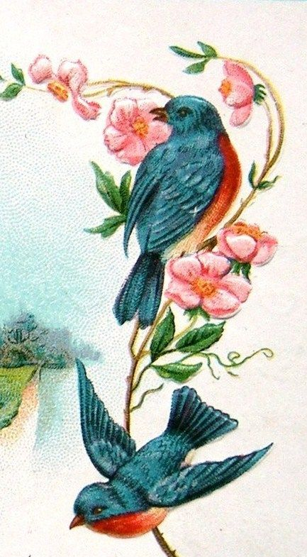 Decoupage Illustration~ Bluebirds On The Blossoms.