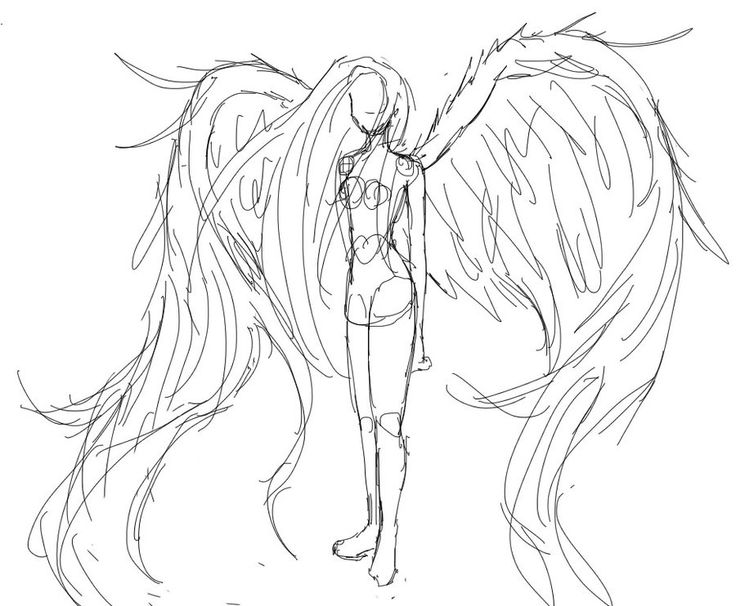 Wings | Wings Sketch by ~CannotTheGrammar on deviantART