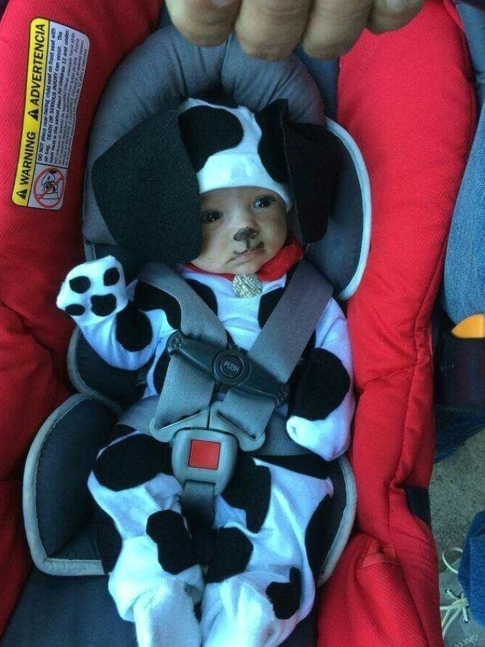 Baby Halloween Costumes Animals.Cutest Baby Animals Pictures Of Kittens Dogs Elephants And More Baby Pets Cu Dogs In 2021 Newborn Halloween Costumes Newborn Halloween Baby Boy Halloween
